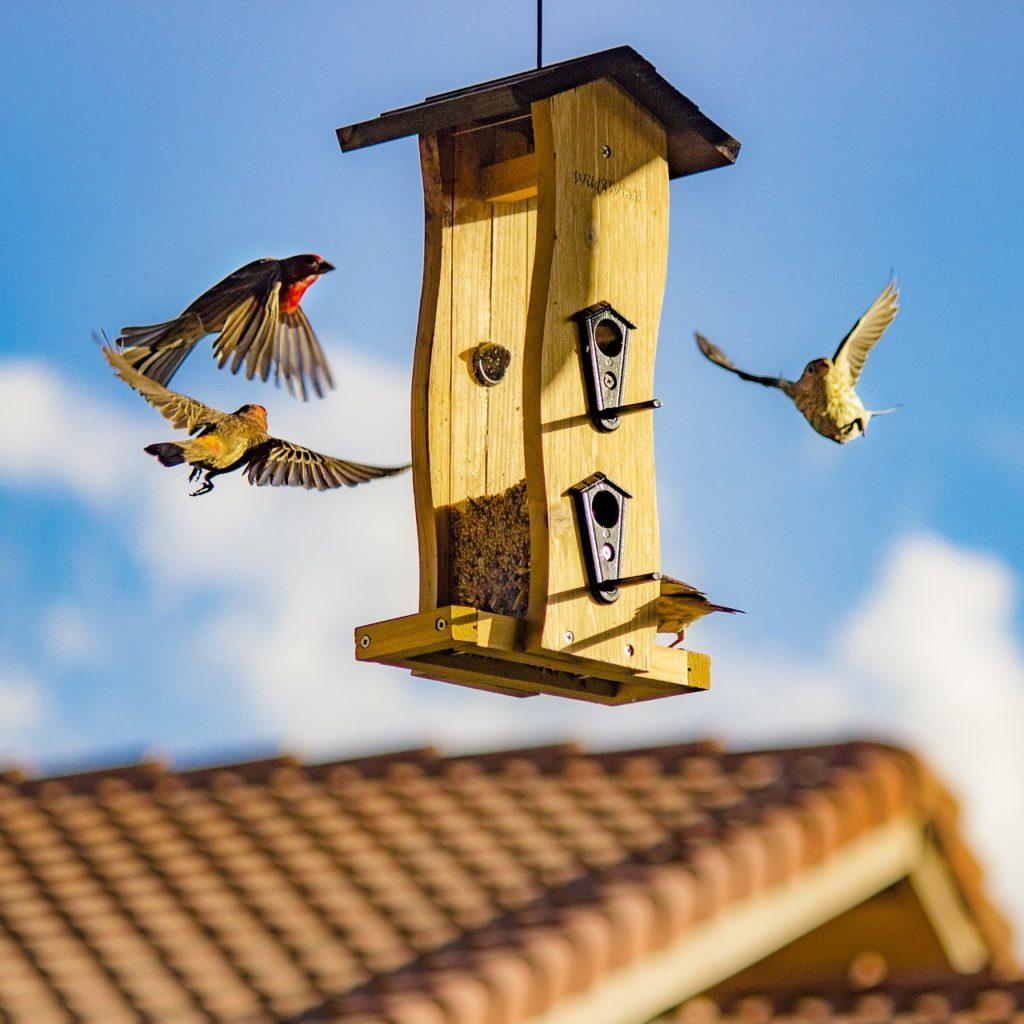 mendota heights mortgage lenders